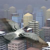 بازی شبیه ساز پرندگان