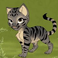 بازی زیبای طراحی گربه